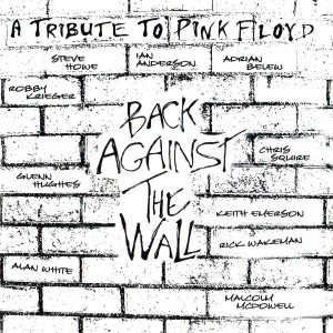 http://www.plattenladentipps.de/wp-content/uploads/2014/02/Various__cov__Back-Against-The-Wall-A-Tribute-To-Pink-Floyd.jpg