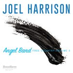 Joel Harrison Angel Band_Free Country Volume 3 Cover