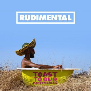 Rudimental Toast To Our Differences Cover